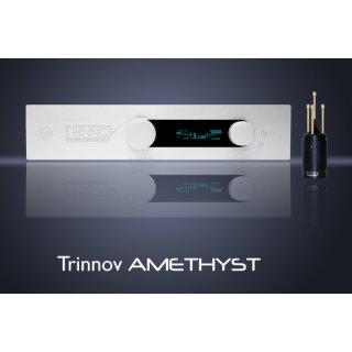 Trinnov Audio Amethyst - Vorverstärker, DA-Wandler, Streamer, Raumeinmessprozessor      0803016